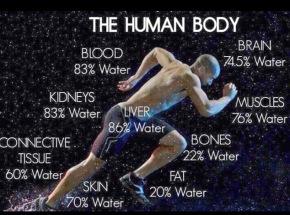 bodywater